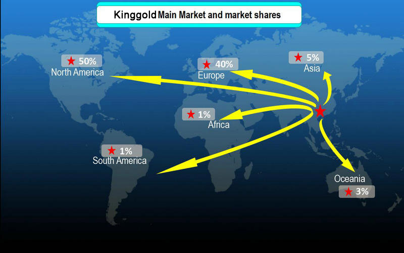 Kangfeng Main Market and market shares_800.jpg